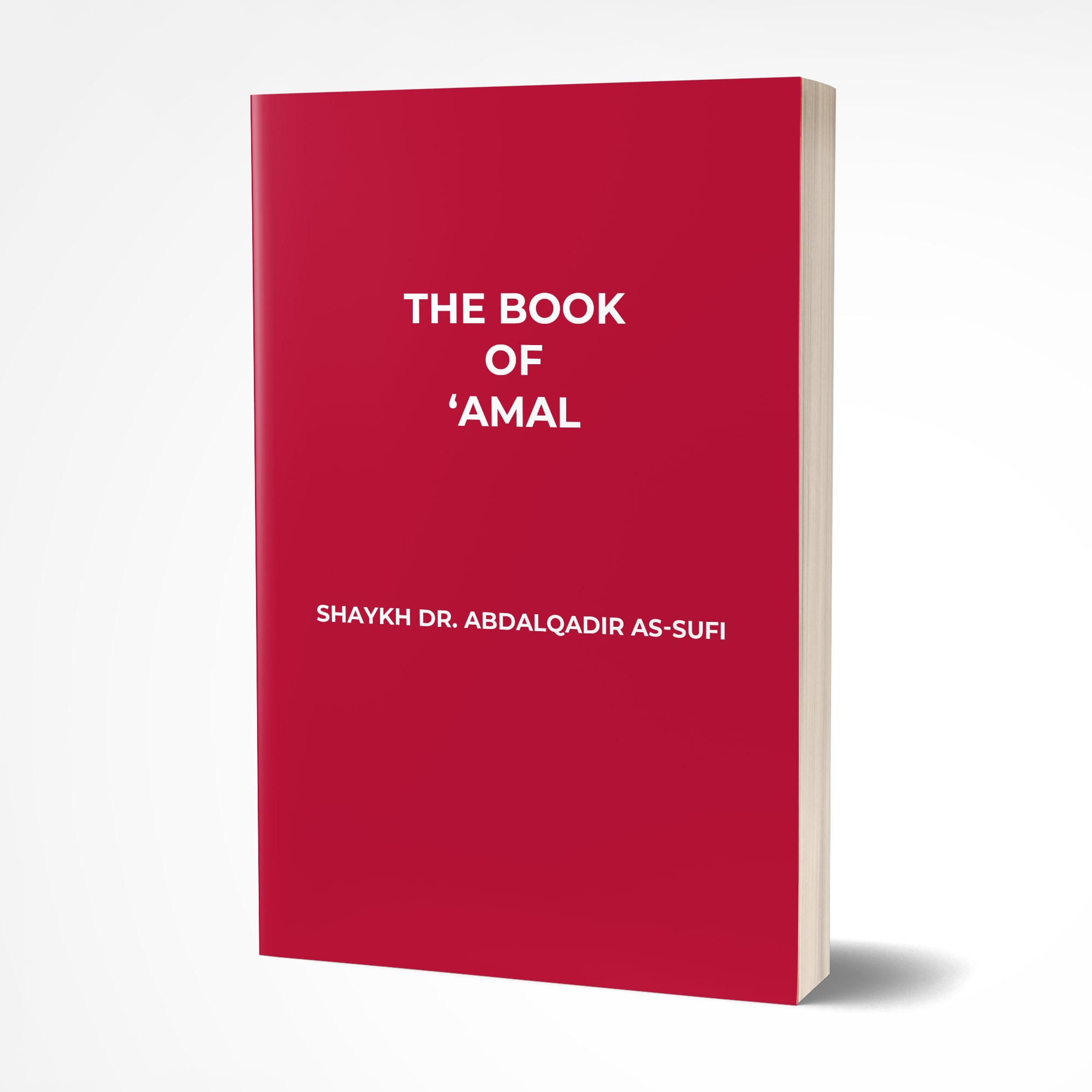 the-book-of-amal-cover-min